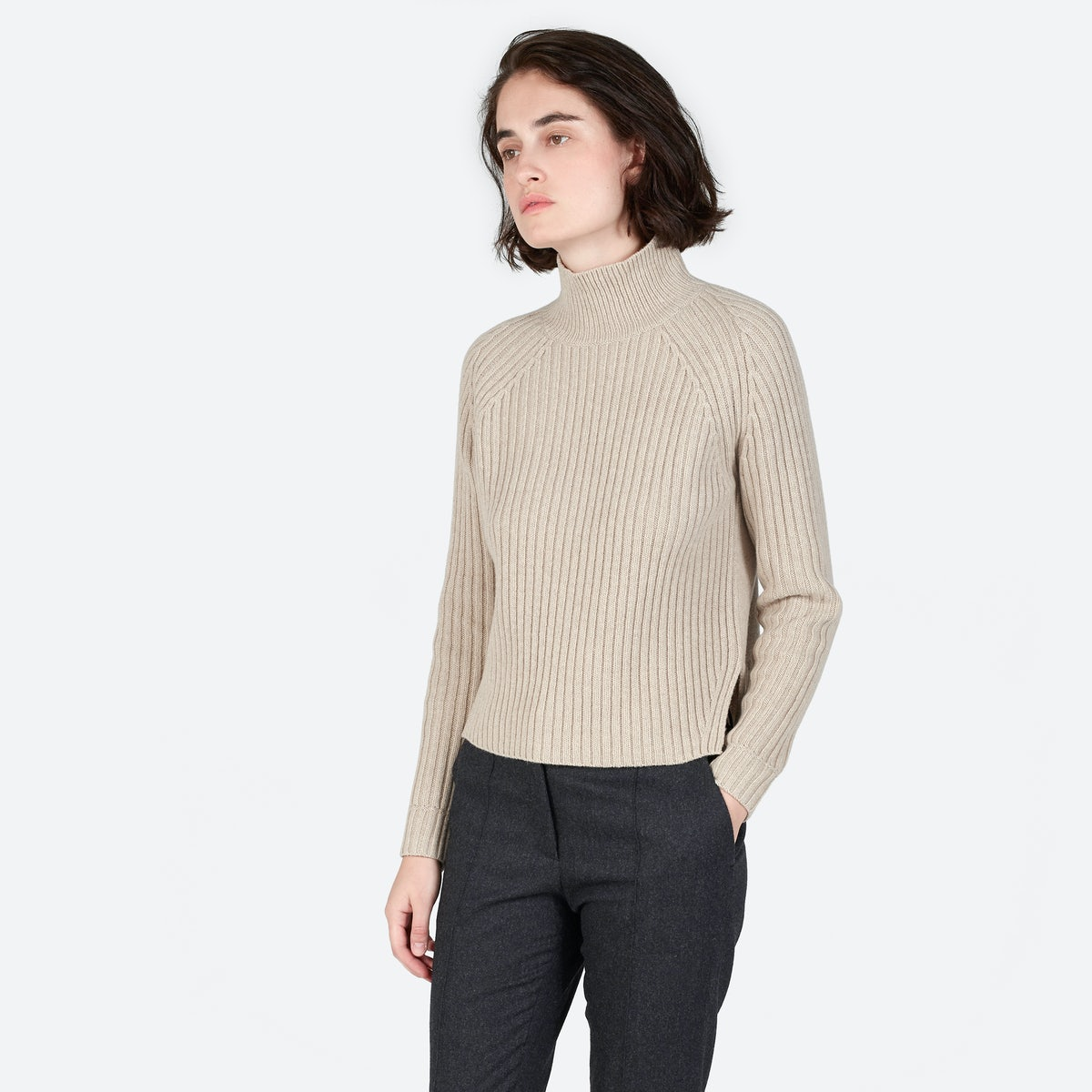 Women's Ribbed Wool-Cashmere Turtleneck | Everlane