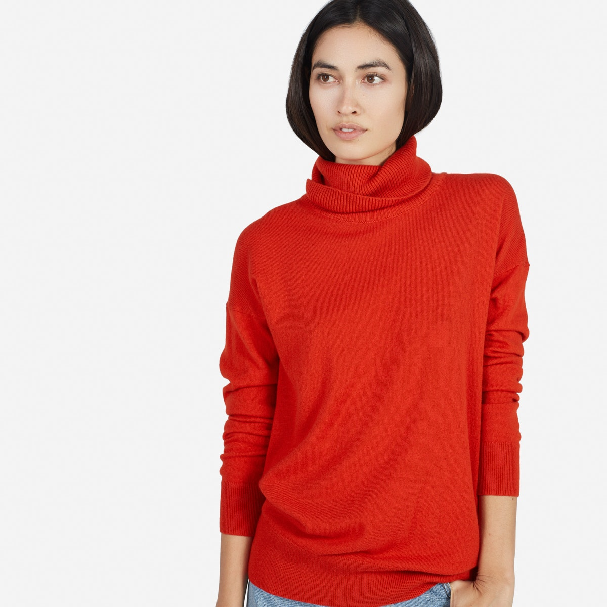 The Cashmere Turtleneck - Everlane