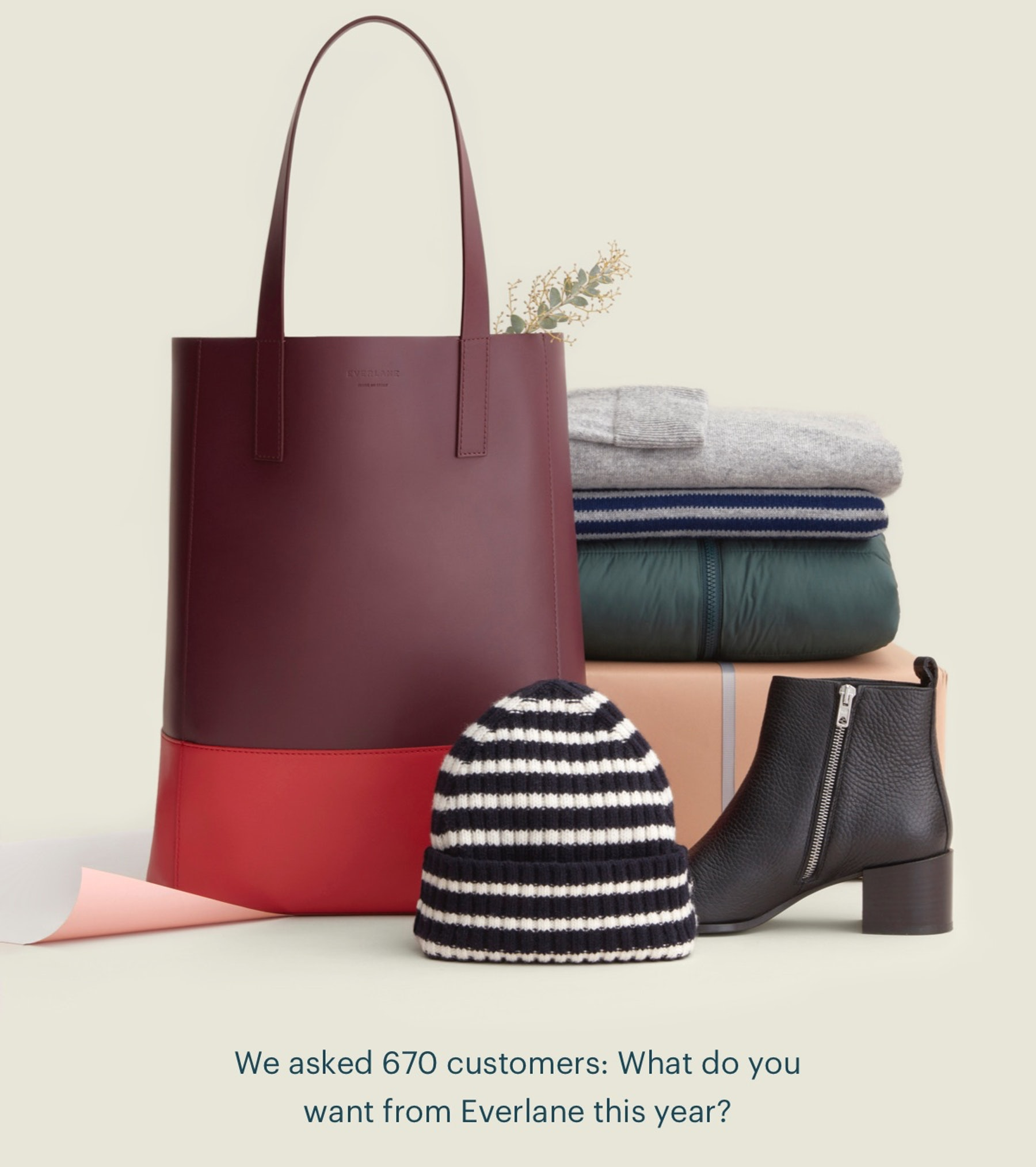 We asked 670 customers: What do you want from Everlane this year?